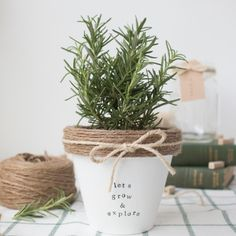 Make these adorable terracotta pot using paint, twine, and stamps.