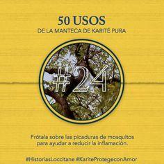 Uso del Karité #24 Calmante desiflamatorio! #karite #karitepretegeconamor #historiasloccitane #loccitane #tips