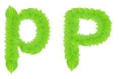 Alfabeto inglés hecho de hojas verdes — Imagen de stock English Alphabet, Stock Photos, Green, Green Leaves, So Done