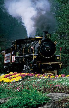 Dollywood. I loved this train as a child!
