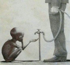 Unfettered Capitalism Leads to Corruption Meaningful Pictures, Powerful Pictures, Rich Vs Poor, Pictures With Deep Meaning, Arte Dope, Digital Foto, Afrique Art, Satirical Illustrations, Deep Art