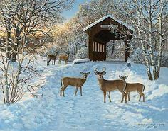 Chilly Sunshine-Deer Painting by Persis Clayton Weirs
