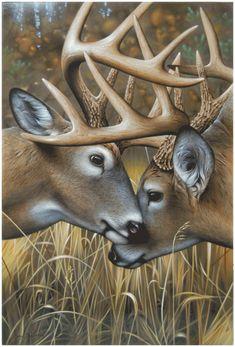 """""""Rumblin' Studs"""" Original by Jerry Gadamus Wildlife Paintings, Wildlife Art, Animal Paintings, Nature Paintings, Whitetail Deer Pictures, Deer Photos, Deer Head Silhouette, Forest Silhouette, Hunting Tattoos"""