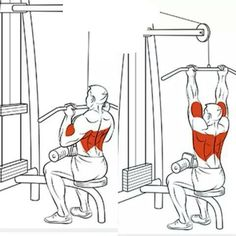 Back Exercises Ejercicios de Espalda - Tap the link to shop on our official online store! You can also join our affiliate and/or rewards programs for FREE! Cable Workout, Gym Workout Tips, Biceps Workout, At Home Workouts, Workout Men, Workout Routines, Weight Training Workouts, Gym Training, Muscle Fitness
