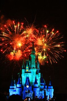 Fireworks over Cinderella Castle..I want this tattooed on me!@Stef
