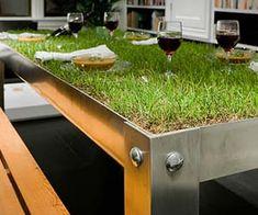 Grassy Lawn Picnic Table