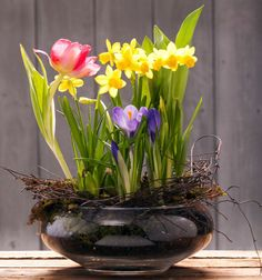 Spring Bulbs and Flowers | Spring Bulb Garden, Fresh and in Season - Fresh Flower Delivery from ...