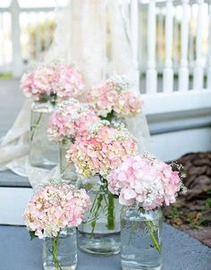 Rosen und Protea