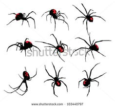 Rocooart Spider Tatoo Scorpion Temporary Tattoo Stickers For Halloween Fake Tattoo Body Art Tatuajes Joke Tatouage Temporaire Fake Tattoos, Black Tattoos, Body Art Tattoos, Tattoo Drawings, Tattoos For Guys, Spider Web Drawing, Spider Web Tattoo, Spider Art, Tatouage Black Widow
