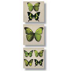 ACHICA | Tríptico Green butterflies de Arthouse, 25x25cm