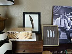 DIY Feather Art, DIY, crafts, art, feathers, home, home decor