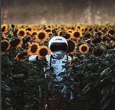 Imagen de astronaut, photography, and sunflowers - Cosmonautas y astronautas Texture Architecture, Astronauts In Space, Conceptual Photography, Deep Space, Vintage Design, Illustrations And Posters, Aliens, Art Inspo, Bunt
