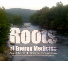 Roots of Energy Medicine retreat In the heart of Appalachia August 1-3, 2014  http://suzanneraganlentz.com/work-with-me/rootsofenergymedicine/