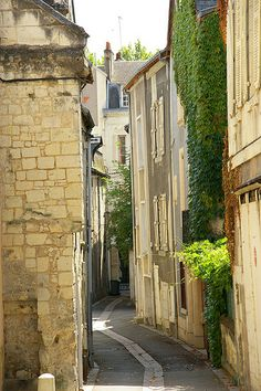 Ivy-Covered Houses in Chinon, France