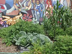 Social Permaculture by Starhawk, by Starhawk