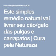 Este simples remédio natural vai livrar seu cão/gato das pulgas e carrapatos   Cura pela Natureza