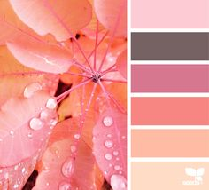 Design Seeds + Color Atlas by Archroma® Colour Pallette, Color Palate, Colour Schemes, Color Combos, Color Patterns, Design Seeds, Color Concept, World Of Color, Color Swatches