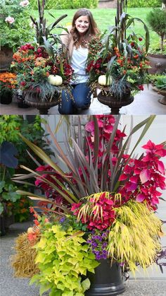 22 Beautiful Fall Planters for Easy Outdoor Fall Decorations 22 gorgeous fall planters for Thanksgiving & fall decorations: best fall flowers for pots, & great autumn planter ideas with mums, pumpkins, kale, & more! - A Piece of Rainbow Fall Flower Pots, Fall Flowers, Purple Flowers, White Flowers, Fall Planters, Outdoor Planters, Autumn Planter Ideas, Fall Potted Plants, Autumn Garden