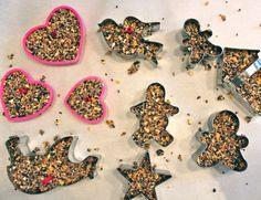 Home-Made Bird Treats Recipe