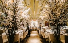 Ballroom bedecked with cherry blossoms, stunning! | A Classic Wedding at Four Seasons with Cherry Blossoms: Kelvin and Charmaine