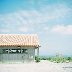 **mog** 回帰の場所  @カフェこくう 沖縄 今帰仁村 Rolleiflex 2.8F film : FUJICOLOR PRO 400