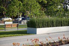 Hollister-Courthouse-Cliff-Lowe-Associates-06 « Landscape Architecture Works   Landezine
