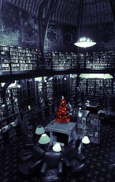 Bookshelves amp Reading Places On Pinterest Home Libraries