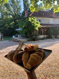 Vakantiedomein op idyllische plek in Zuid Frankrijk   Domaine du Merlet