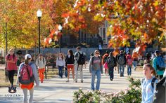 Fall in Auburn