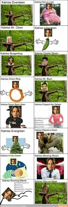 Love all the Hunger Games! The hunger games, catching fire, mockingjay part mockingjay part 2 Hunger Games Humor, Hunger Games Fandom, Hunger Games Catching Fire, Hunger Games Trilogy, The Hunger Games, It's Over Now, Jenifer Lawrence, Funny Memes, Hilarious
