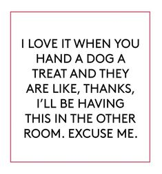 I Love Dogs, Puppy Love, Dog Quotes, Funny Quotes, Funny Animals, Cute Animals, Just Love Me, Dog Lady, Love Memes