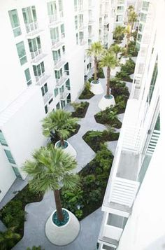 The Palms designed by CMG Landscape Arch (Footpaths common areas)