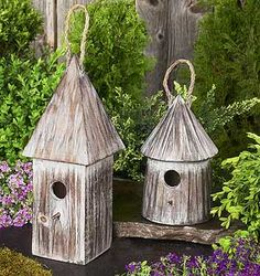 Google Image Result for http://www.treefrognursery.com/images/products/bird_houses.jpg