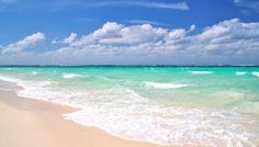 #QuintanaRoo, #Mexico: #Housesitter / #Petsitter needed. www.caretaker.org
