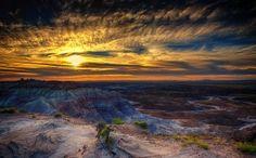 Аризона, скалы, лес