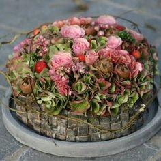 Fall Flowers, Love Flowers, Dried Flowers, Garden Workshops, Floral Cupcakes, Fall Flower Arrangements, Decoration Inspiration, Funeral Flowers, Floral Bouquets