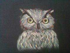 Owl Pastel pencils