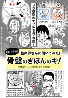 【体験ルポ】整体師に聞いた、骨盤がゆがむとはどういうこと?「骨盤のきほんのキ!」 - いまトピ Home Health, Health Diet, Health Fitness, Acupuncture Points, Medical Science, Beauty Care, Body Care, Herbalism, Herbal Remedies