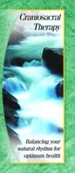 Lymphatic Massage Brochure Template  A Marketing Brochure For