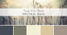 Daily Color Palette: Neutral Haze. Neutral color palettes in nature. - Life Rooted in Design
