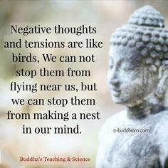 Negative thoughts and tensions are like birds. We cannot stop them from flying near us, but we can stop them from making a nest in our mind. Buddhist Quotes, Spiritual Quotes, Wisdom Quotes, Quotes To Live By, Positive Quotes, Me Quotes, Buddhist Wisdom, Crush Quotes, Qoutes