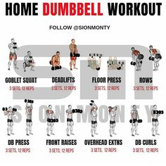 Weight Training Workouts, Gym Workouts, At Home Workouts, Weight Exercises, Training Plan, Training Tips, Fitness Models, Fitness Tips, Muscle Fitness