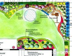 Ogród, a najlepiej piękny ogród - jak się do tego zabrać? - strona 28 - Forum ogrodnicze - Ogrodowisko