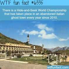 There is a hide and seek World Championship in Italy - WTF fun facts
