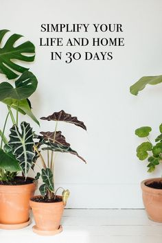 Simplify your life and home in 30 days
