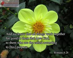 """""""And we know that all things work together for good to them that love God, to them who are the called according to his purpose."""" Rom 8:28"""
