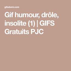 Gif humour, drôle, insolite (1)   GIFS Gratuits PJC