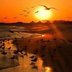 Akşam olur gün eskir. Aylar geçer yıllar eskir. Yolun yarısından sonra insan eskir. Eskimeyen bir kaç şey varsa hayata dair, Biri yarın, biri umut, biri mavi, biri sevgidir.