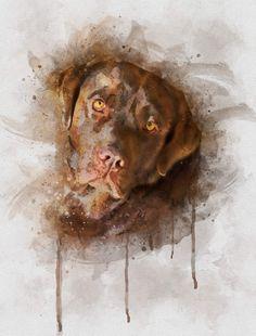Watercolor Pictures, Watercolor Portraits, Watercolor Art, Chocolate Labrador Retriever, Labrador Retriever Dog, Custom Dog Portraits, Pet Portraits, Animal Sketches, Animal Drawings