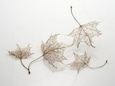 tree leaves from human hair...whoa